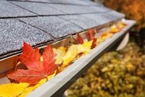 Leaves in Gutters